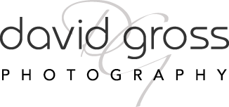 David Gross Photography